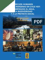 derechos-de-los-pueblos-indigenas-oc-fhb.pdf