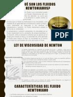 fluidos newtonianos (1)