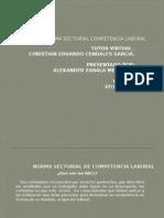 INDUCCION NSCL Norma Sectorial Competencia Laboral.