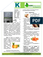 Ficha Tecnica Fertilizante Nutri k AgroSoluciones LA