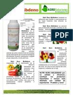 Ficha Tecnica Fertilizante Nutri B Mo AgroSoluciones LA