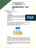 LAB DE ONDAS.docx