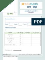 Examen Trimestral Sexto Grado Bloque II 2019-2020