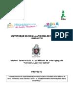 INFORME TECNICO MEFCA final (2)