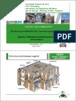 Manoel_F_M_Nogueira-Caracterizacao_Biomassa (I Escola de Combustão - 2007 - Curso Biomassa Energética).pdf