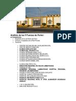 98493943-Analisis-de-las-5-Fuerzas-de-Porter.pdf