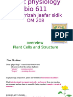 1 Lec.1(w1)  Overview and Plant structure.ppt