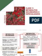 FV2019C12METABO.pdf