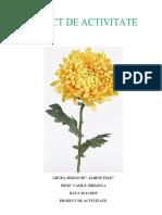 pr._memorizare_crizantema_cu_scopul_mem..docx