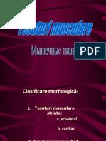 Tesuturi musculare.ppt
