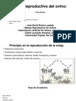 presentación 2 (1)