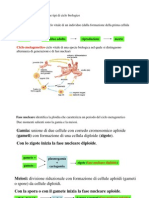 Cicli_metagenetici