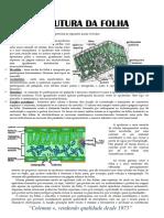 manual_1363291440.pdf