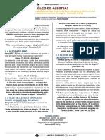 1. 12 LIDER - OLEO DE ALEGRIA