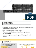 cereal_report.pptx