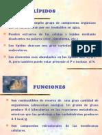 presentacionlipidos-130828224707-phpapp02