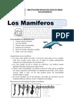 mamiferos- juan joser