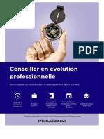 Conseiller en évolution professionnelle.pdf