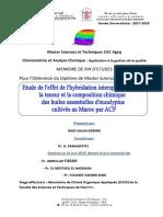 Etude de l'effet de l'hybridat - Salah-Eddine BAID_4917