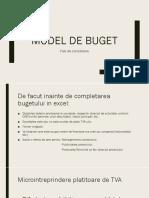 buget.pdf