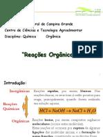 Reações Orgânicas.pdf