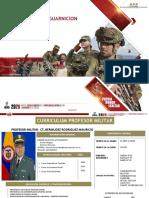 SERVICIOS DE GUARNICION.pptx