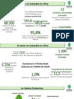Fedemaderas cifras 2019