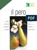 il.pero.pdf