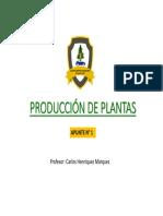 PRODUCCIÓN DE PLANTAS 2020