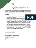 SEL - Terminos y Condiciones - P. Jurídica