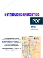 2 metabolismo energetico.ppt