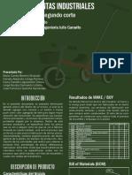 DPIN Triciclo
