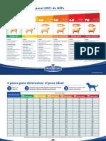 Indice grasa corporal perro.pdf
