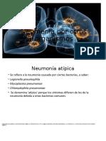 Neomenia%20por%20otros%20organismos.pptx_1.odp