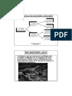4-morf(b)-b&n.pdf