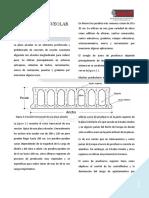 La Placa Aleveolar_7782 ojo.pdf