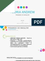 PIRAMIDE DE MASLOW - JAVIER