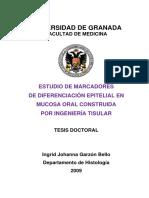 mucosa.pdf