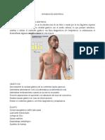 284372400-INTUBACION-GASTRICA.pdf