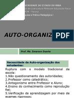 Auto-organização.ppt