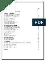 PLAN DE NEGOCIOS - FARMACIA.docx