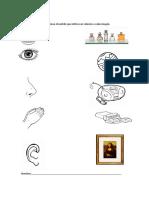 fhicha_ndeg4_relacionar_sentidos_con_elementos