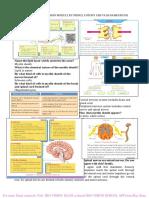BIO-VISION_SSLC BIOLOGY A PLUS MODULE .pdf