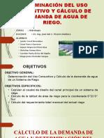 DETERMINACION DEL USO CONSUNTIVO  Y CALCULO DE LA DEMANDA DE AGUA