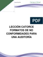 LECCIÓN CATORCE EJEMPLOS DE FORMATOS PARA UNA AUDITORÍA