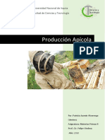 Produccion apicola Patricia Alvarenga