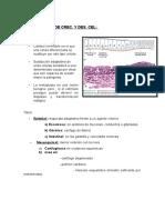 definicion-seminario-2