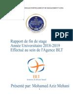 rapport aziz 2019