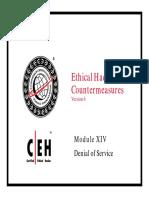 Denial of Service.pdf
