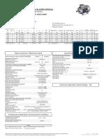 1LE1603-1EA23-4AB4_datasheet_es_en.pdf